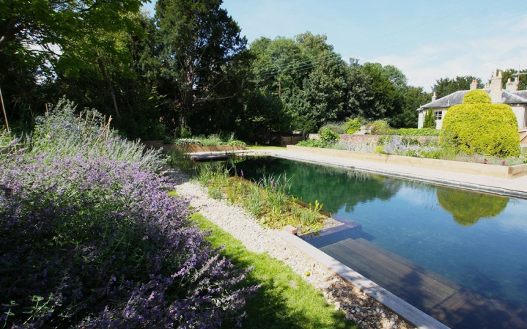 Surrey-garden-designer-natural-swimming-pool-designs-Hampshire--