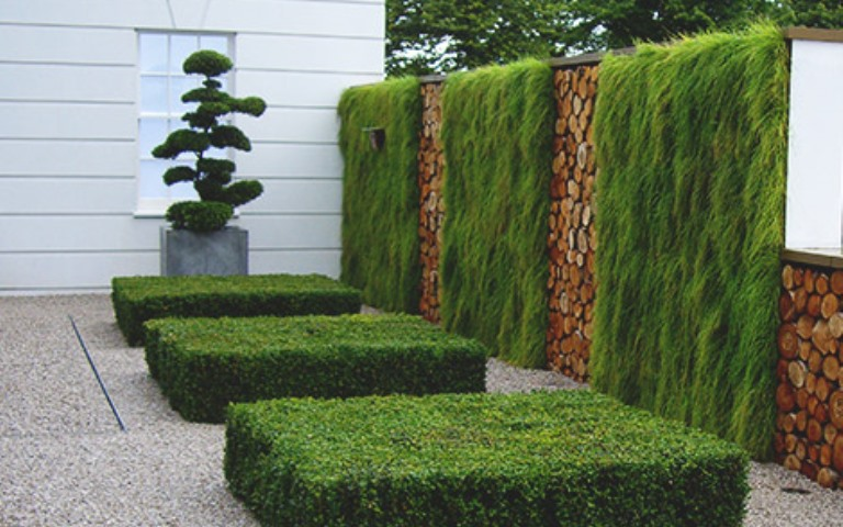 Surrey-garden-designers-green-walls