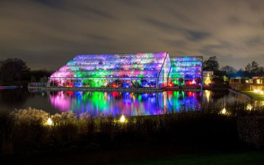 RHS-wisley-surrey-gardens-christmas-glow-lighting-design