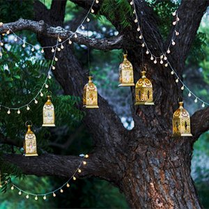 Surrey-garden-garden-lights-accesories-fairy-lights-garden-designs