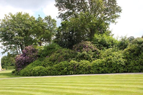 Surrey-garden-designer-West-Sussex-Garden-maintenance-landscapers