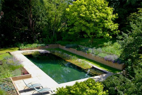 Natural swimming pool gardens for Garden pool dimensions